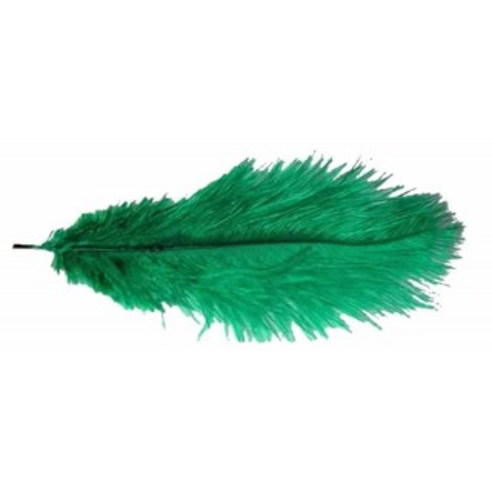 Pluma avestruz verde 40 cm