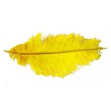 Pluma avestruz amarilla 40 cm