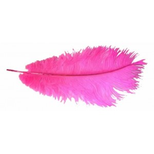 Pluma avestruz lila 40 cm