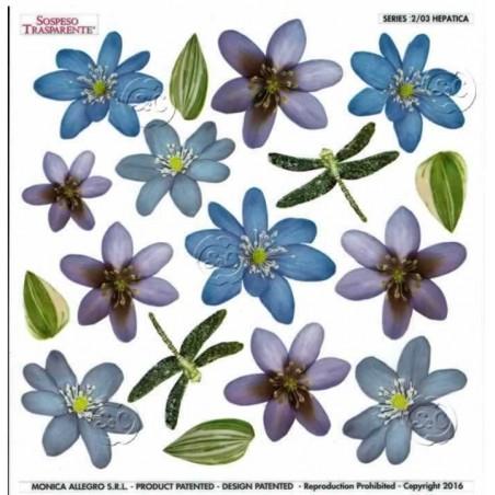 Lamina sospeso prediseñado Hepatica 23 x 23 cm
