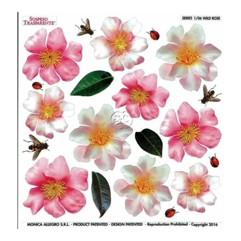 Lamina sospeso prediseñado Wild Rose 23 x 23 cm