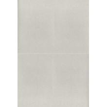 Cartulina 50 x 65 cm con purpurina plata