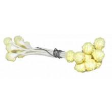 Pistilos polen amarillo 7 cm