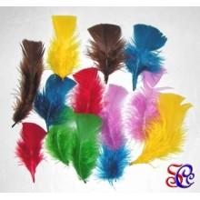 Bolsa de 12 plumas punta recta surtidas