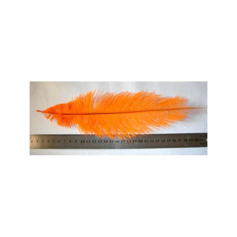 Pluma avestrud CHICK, 50 cm aprox. Naranja