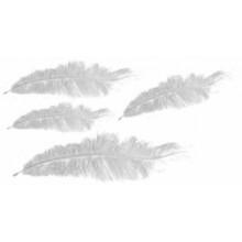 Plumas marabu Blancas