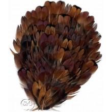 Tocado de plumas faisán castaño