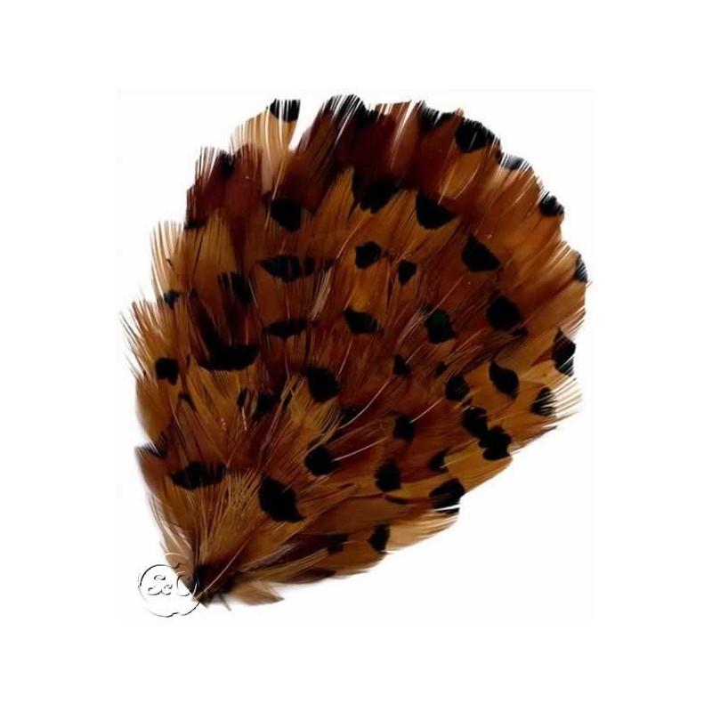 Tocado de plumas faisán marrón