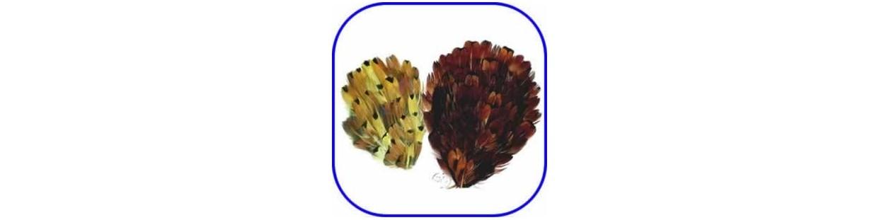 Apliques de plumas