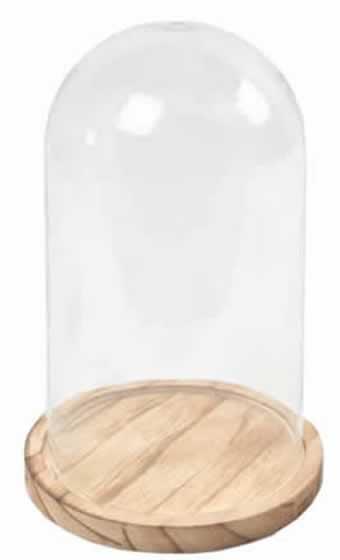 Cupula de cristal grande
